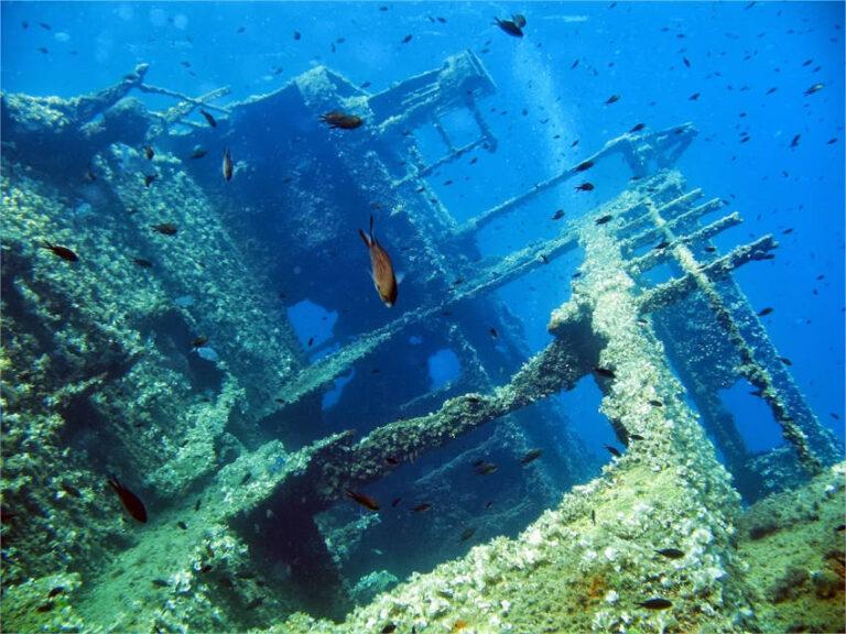 Il Relitto di Pomonte   Isola d'Elba
