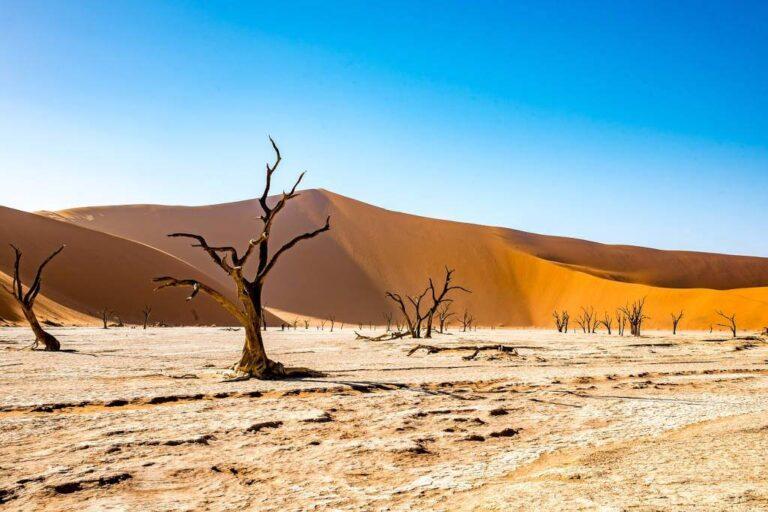 La Deadvlei in Namibia